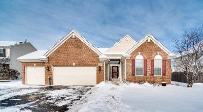 Oswego Single Family Home For Sale: 509 Chestnut Drive