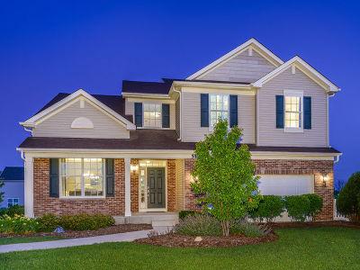 Joliet Single Family Home For Sale: 516 Cahokia Street