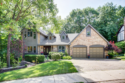 Lemont Single Family Home For Sale: 7 Spruce Court