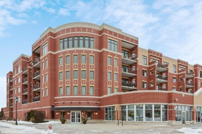 Roselle Condo/Townhouse For Sale: 225 Main Street #307