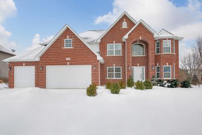 Ashwood Park Single Family Home For Sale: 4248 Chaparral Drive