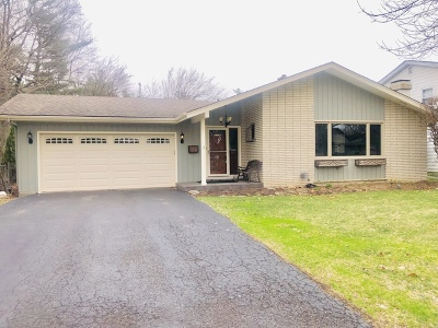 Naperville Single Family Home For Sale: 1252 Sandpiper Lane