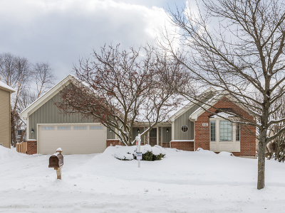 West Chicago  Single Family Home For Sale: 830 High Ridge Drive