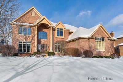 Batavia  Single Family Home For Sale: 2263 Bird Lane