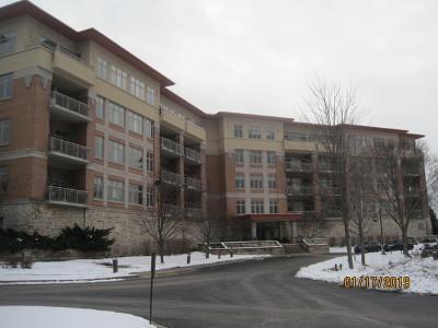 Wheeling Condo/Townhouse Contingent: 45 Prairie Park Drive #210