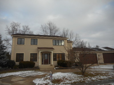 Schaumburg Single Family Home For Sale: 527 Cottonwood Lane