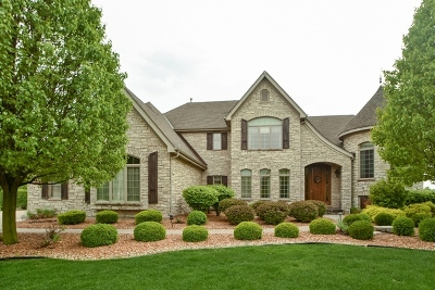 Single Family Home For Sale: 22542 Swanstone Court