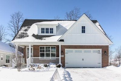 Darien Single Family Home For Sale: 2154 Cottage (Lot 4) Lane
