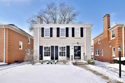 Oak Park Single Family Home For Sale: 841 North Marion Street