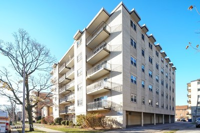 Forest Park Condo/Townhouse For Sale: 215 Marengo Avenue #3H