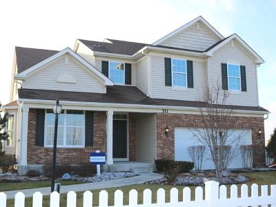 Joliet Single Family Home For Sale: 511 Cahokia Street