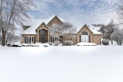 St. Charles Single Family Home For Sale: 6n734 Henricksen Road