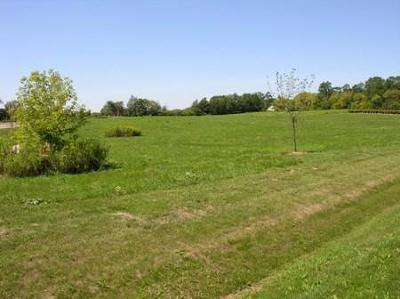 Spring Grove Residential Lots & Land For Sale: 11601 Emily Court