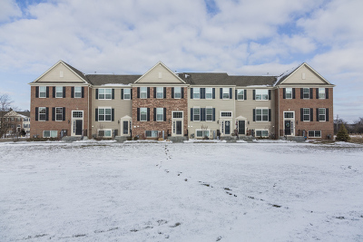 South Elgin Condo/Townhouse Price Change: 1565 Deer Pointe Drive