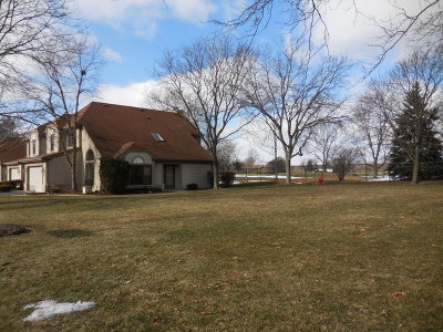 Schaumburg Condo/Townhouse For Sale: 160 Barton Circle