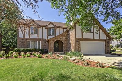 Bartlett Single Family Home For Sale: 220 Patricia Lane