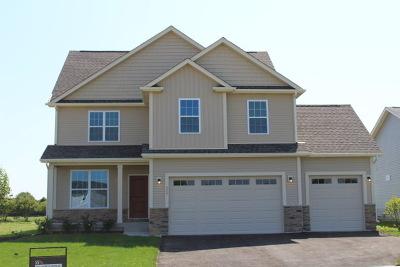 Hampshire Single Family Home For Sale: 523 Jessamine Lane