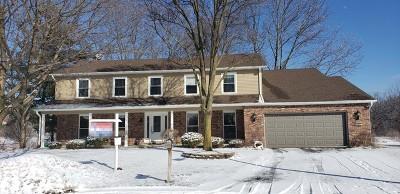 Lisle Single Family Home For Sale: 6407 Ory Bridge Court