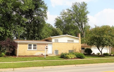 Wheaton Single Family Home For Sale: 1319 North President Street