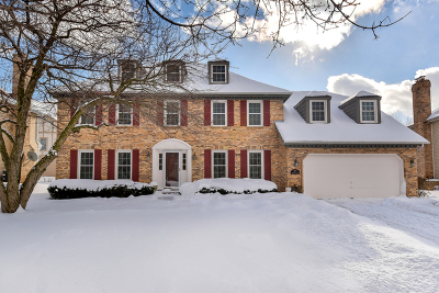 Naperville Single Family Home For Sale: 677 Alexandria Drive