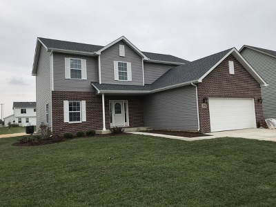 Channahon Single Family Home For Sale: 27433 West Deer Hollow Lane
