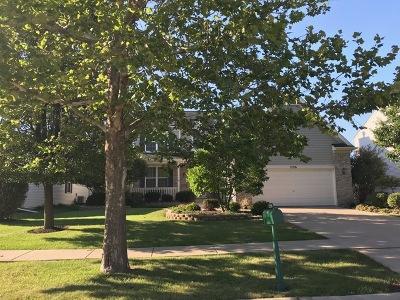 Plainfield Single Family Home For Sale: 2196 Ashby Lane