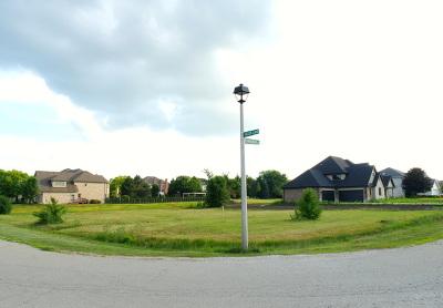 Homer Glen Residential Lots & Land For Sale: 14748 Helen Lane