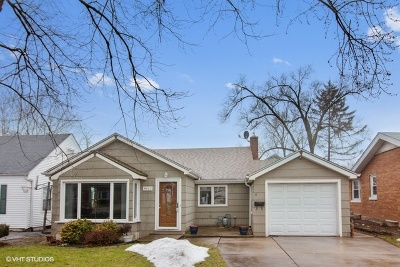 Western Springs Single Family Home For Sale: 4052 Western Avenue