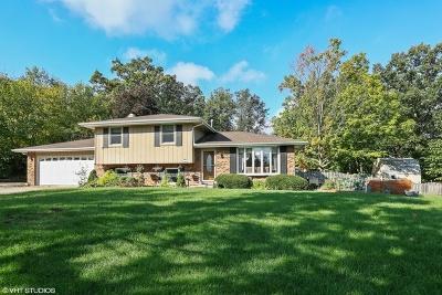 Homer Glen Single Family Home For Sale: 13724 Lemont Road