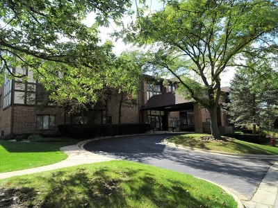 Palos Heights Condo/Townhouse For Sale: 7737 West Golf Drive #103