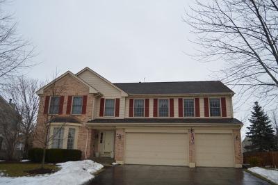 Algonquin Single Family Home For Sale: 1841 Dorchester Avenue