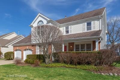Buffalo Grove Single Family Home For Sale: 491 Satinwood Terrace