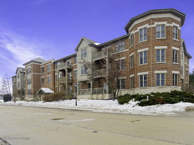 Bartlett Condo/Townhouse For Sale: 271 East Railroad Avenue #107