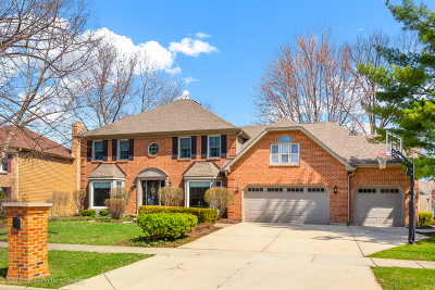 Naperville Single Family Home For Sale: 2242 Lotus Court