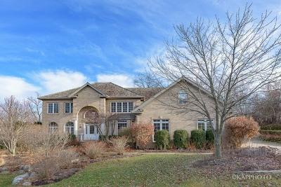 Burr Ridge Single Family Home For Sale: 9645 Pacific Court