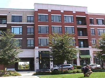 Burr Ridge Condo/Townhouse For Sale: 850 Village Center Drive #204