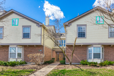 Schaumburg Condo/Townhouse For Sale: 123 Willow Brook Court #5