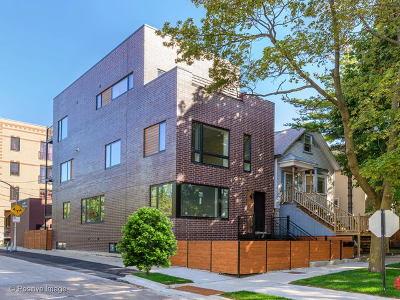 Chicago Condo/Townhouse New: 1756 West Cornelia Avenue #1