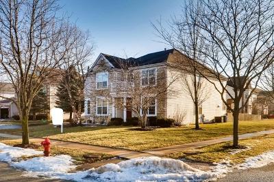 Oswego Single Family Home New: 246 Ashcroft Lane