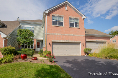 Bartlett Condo/Townhouse For Sale: 158 Orchards Pass #34A