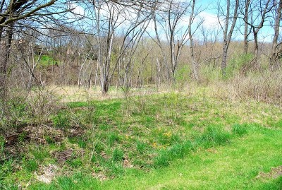 St. Charles Residential Lots & Land For Sale: 5n572 Hidden Springs Drive