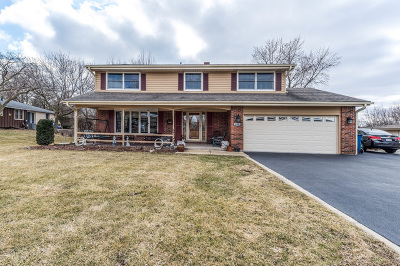 Single Family Home For Sale: 382 Meadowlark Road