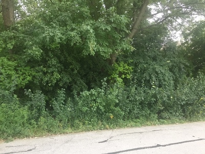 Palos Hills Residential Lots & Land For Sale: 7807 West 100th Street