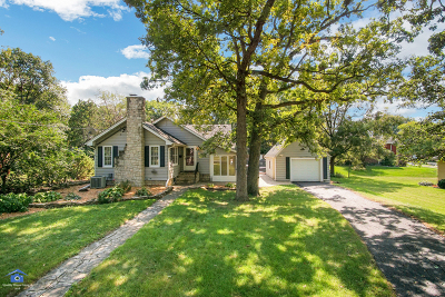 Lemont Single Family Home For Sale: 2 East Logan Street