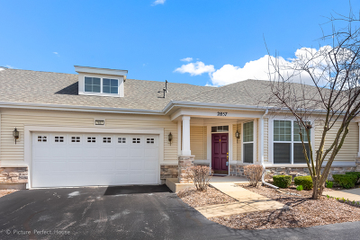 Naperville Condo/Townhouse For Sale: 2857 Normandy Circle