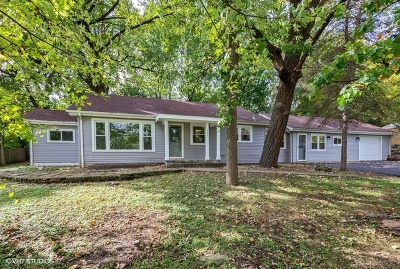 Palos Park Single Family Home For Sale: 11910 South Timberlane Drive