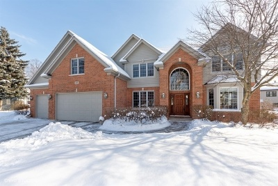 Palatine Single Family Home For Sale: 435 South Winterhaven Court