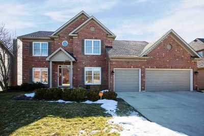 Naperville Single Family Home For Sale: 2640 Freeland Circle