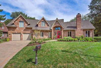 Burr Ridge Single Family Home For Sale: 6037 Sedgley Court