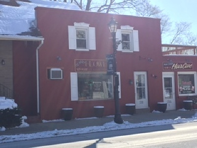 Tinley Park Commercial For Sale: 17309 Oak Park Avenue